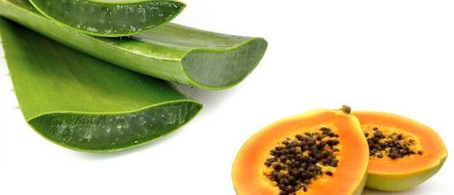 papaya-con-aloe-vera