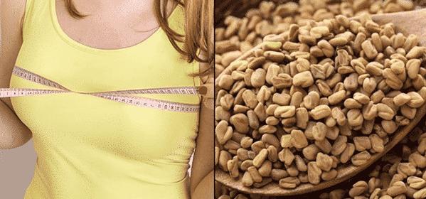 Beneficios de la semilla de fenogreco