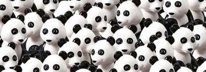 Reto encontrar el perro entre osos panda